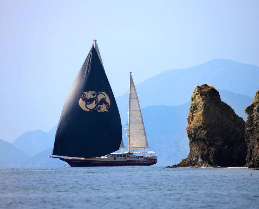 DAIMA Sailing