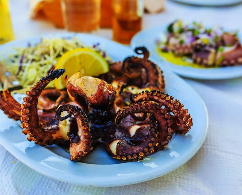 Grilled octopus, traditional Mediterranean dish
